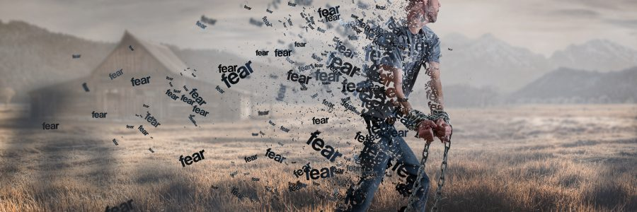 Matthew 28:19-20 – Fearful & Free